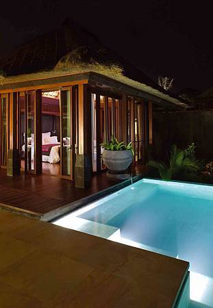 In-villa Plunge Pool.jpg