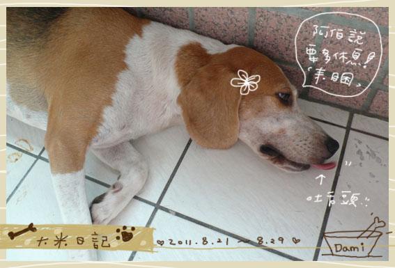 dami-art-0829-3.jpg