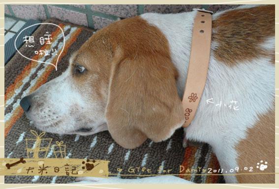 dami-art-0902-4.jpg
