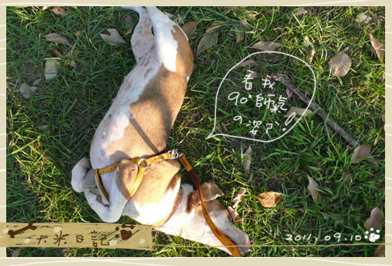 dami-art-0910-3.jpg