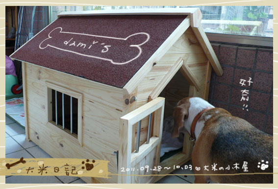 dami-art-1003-7.jpg