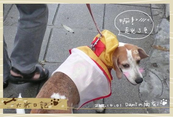 dami-art-1028-3.jpg