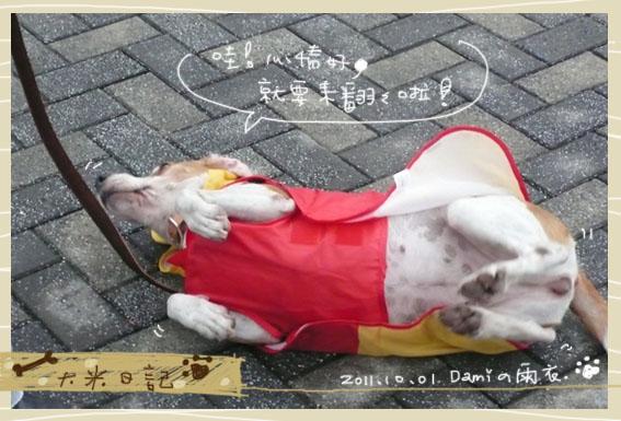 dami-art-1028-5.jpg