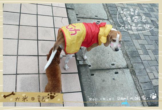 dami-art-1028-8.jpg