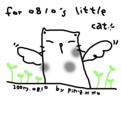 111-cat-s.jpg