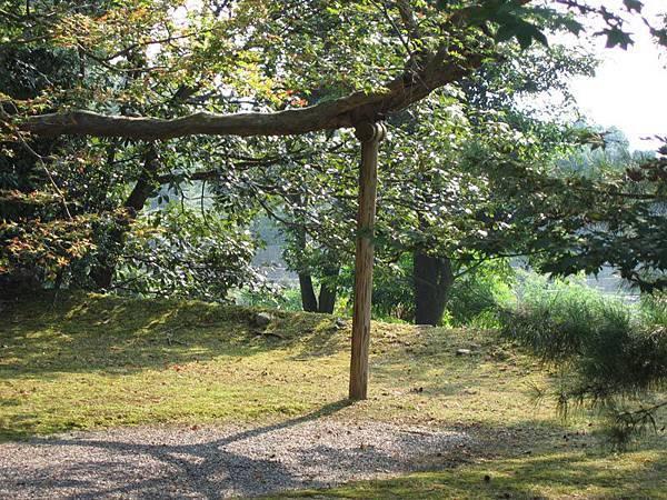 樹架.jpg