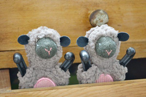 SHEEPY-BrownC