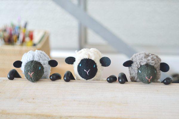 SHEEPY-3ColorsA