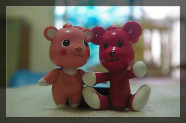 momo&comomo_4.jpg