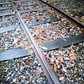 濕濕的鐵軌