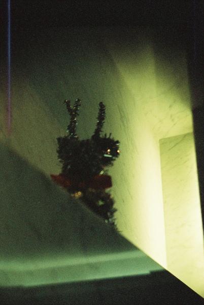 聖誕樹旁的小麋鹿