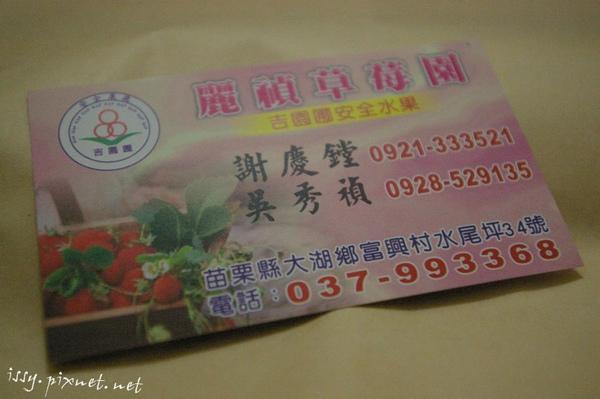 草莓園_1.JPG