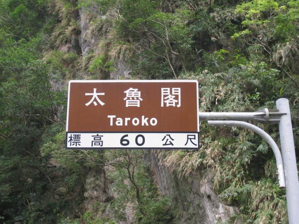 太魯閣標高60公尺.JPG