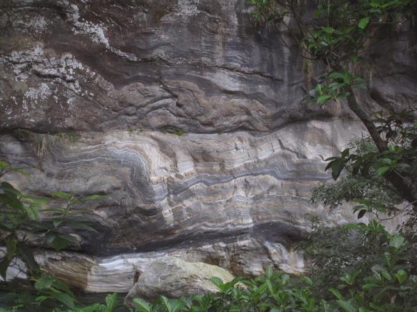 砂卡礑步道14.JPG