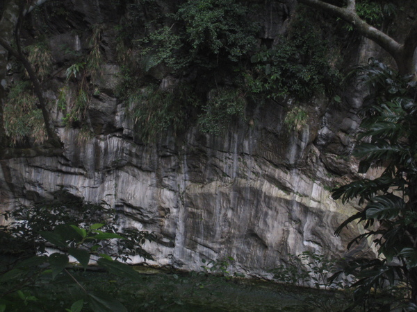 砂卡礑步道16.JPG