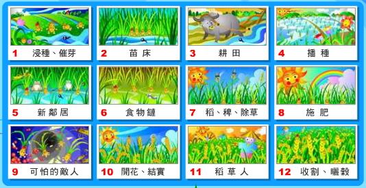稻米成長的故事.jpg