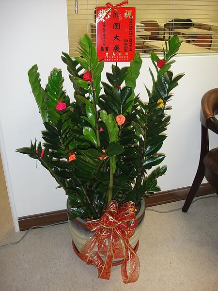 巴里島社區管委會贈花