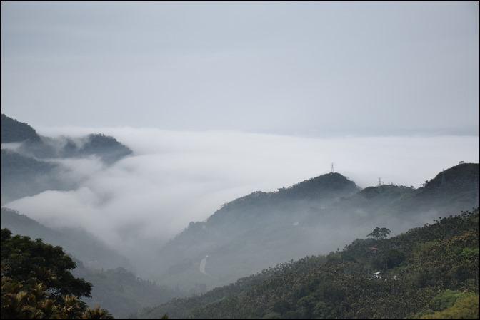 往阿里山一路上看到的美景