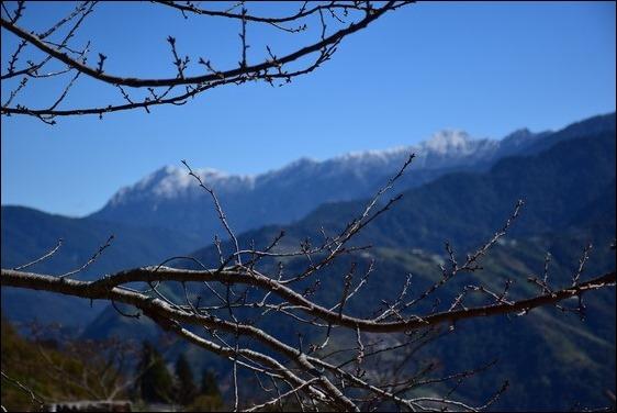 巧遇冰雪奇緣的武嶺和藍天綠地的清境