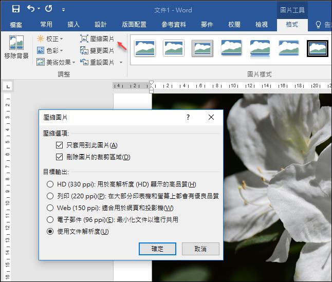 Word-將圖片不儲存於於文件中