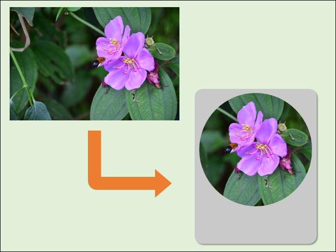 PowerPoint-剪裁相片並製作外框
