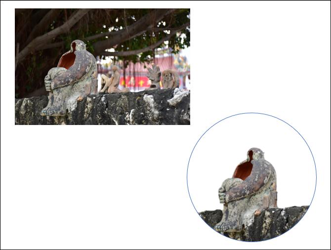 PowerPoint-將矩形相片取出圓形區域並且去背後再融入其他相片中