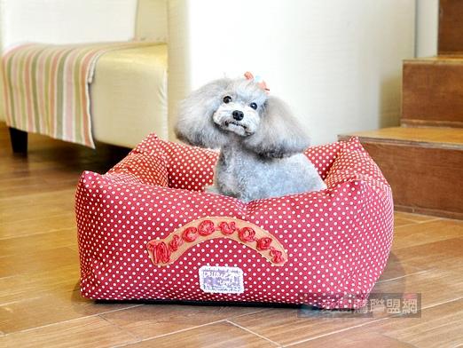 NICOVAER帆布方狗窩 寵物睡墊 寵物睡窩 寵物睡床 紅底白圓點