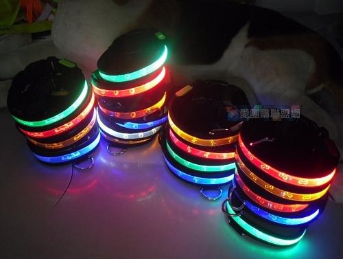 LED寵物發光刻字項圈 尺寸可選~XS/S/M/L(黑色織帶)