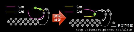 交叉成型說明