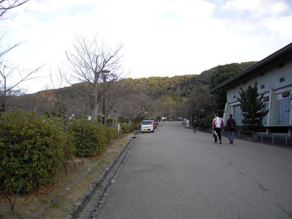 八坂神社後面的賞櫻公園
