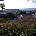 銀閣寺向下挑望的景色