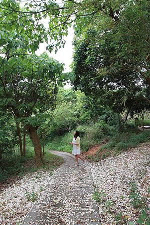 4-1老崎步道.JPG