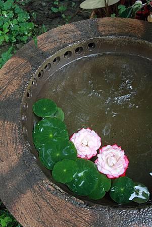9-1華陶窯.JPG