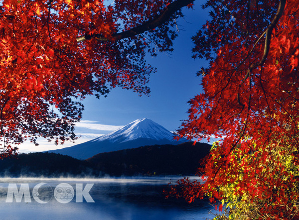 autumn05.jpg