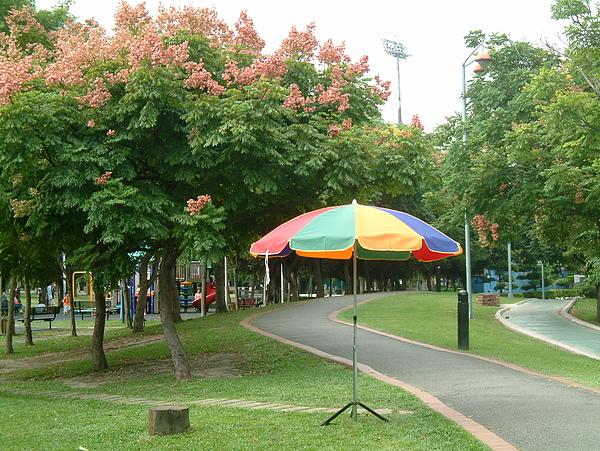 五色50吋圓傘.JPG