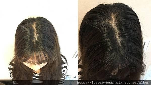 JBLin頭皮調理洗髮霜推薦