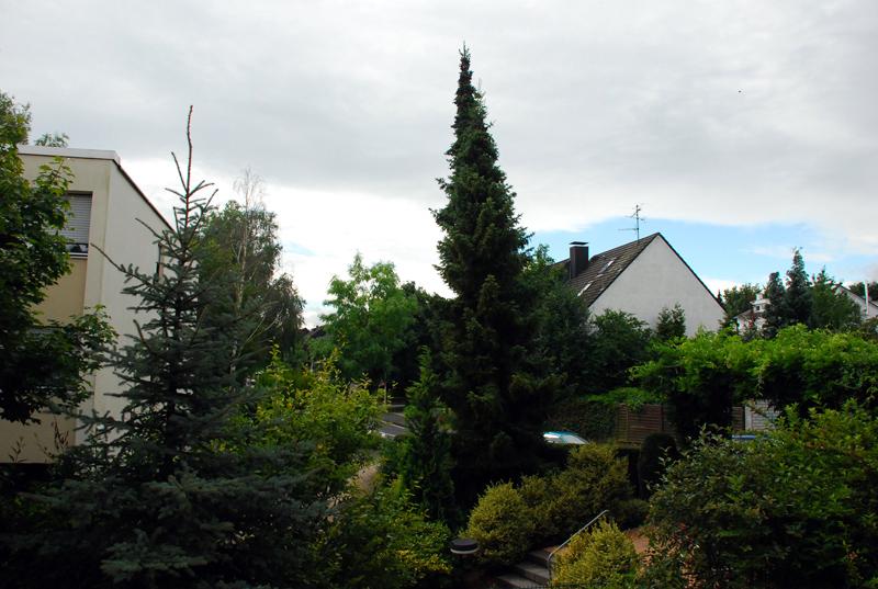 Bonn006.JPG