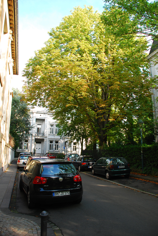 Bonn056.JPG