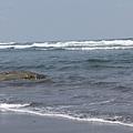 都蘭的海邊