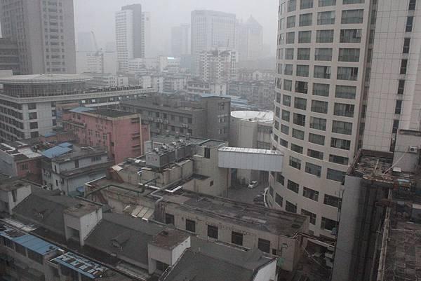 杭州武林万怡酒店 (CountryYard) - view(1)
