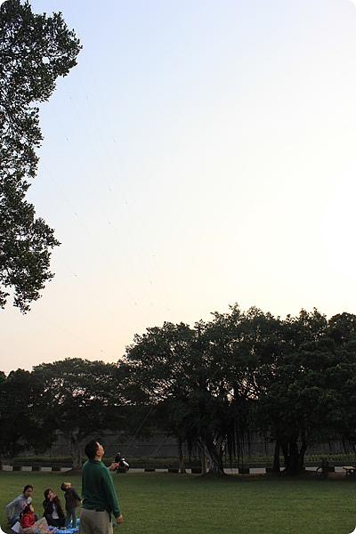 放風箏好厲害 :D