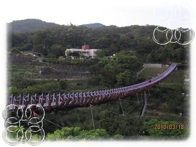 仙草 389.jpg