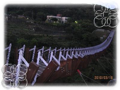 仙草 397.jpg