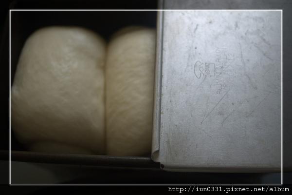 P1000184.jpg