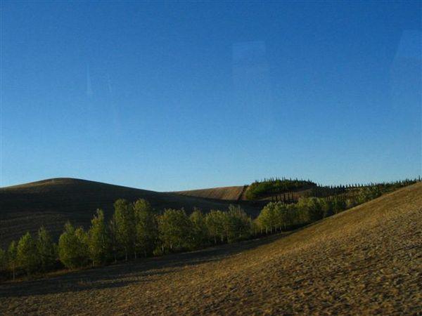 連路邊的景色都這麼美