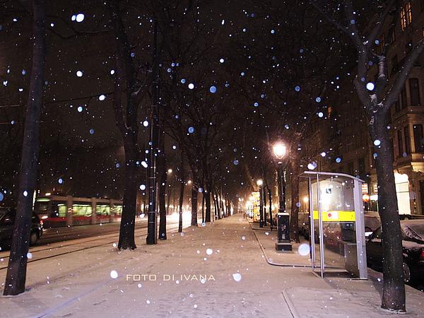 3/6 Vienna 在這拍照拍很久~~由於實在太冷而放棄取景
