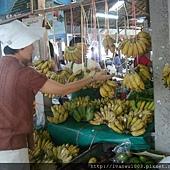 安全野菜市場6