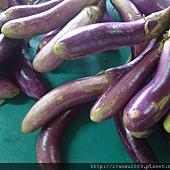 安全野菜市場8