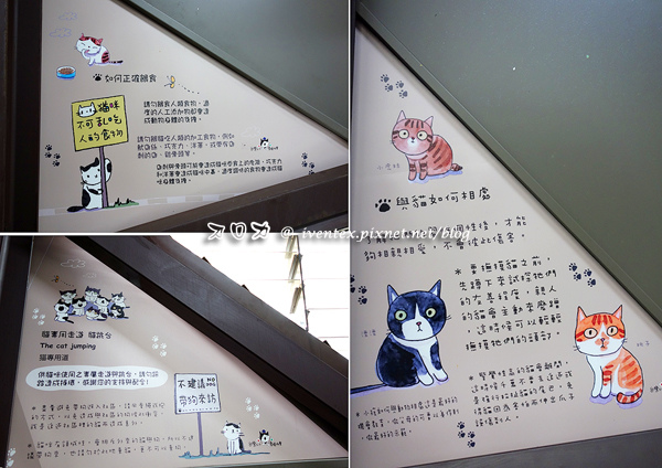 02_瑞芳猴硐貓村