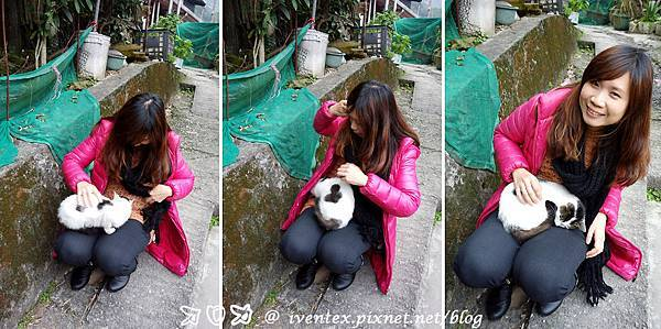 17_瑞芳猴硐貓村